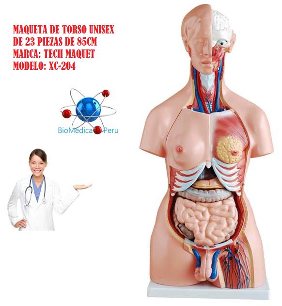 Importadora Biomedica | Inicio